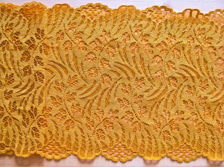 1m elastische Spitze in weizen-gold Fb0891