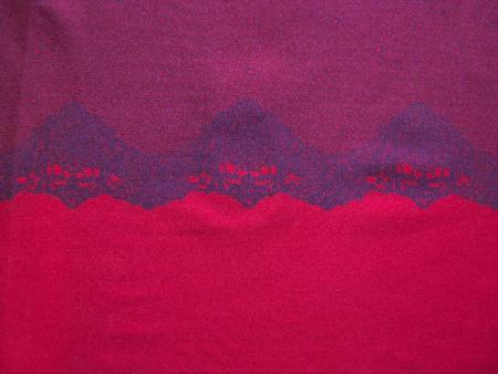 """1m """"Spitzen""""-Microfaser """"Eurojersey"""" in amaranth/lip-stick Fb1421"""