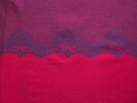"""""""Spitzen""""-Microfaser """"Eurojersey"""" in amaranth/lip-stick Fb1421"""