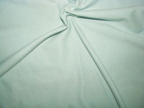 Fein-Jersey in mint Fb0407